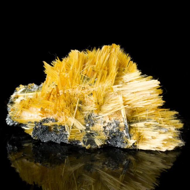 "2.4"" Golden Crystal RUTILE Needles Growing Out of Gray HEMATITE Brazil for sale"