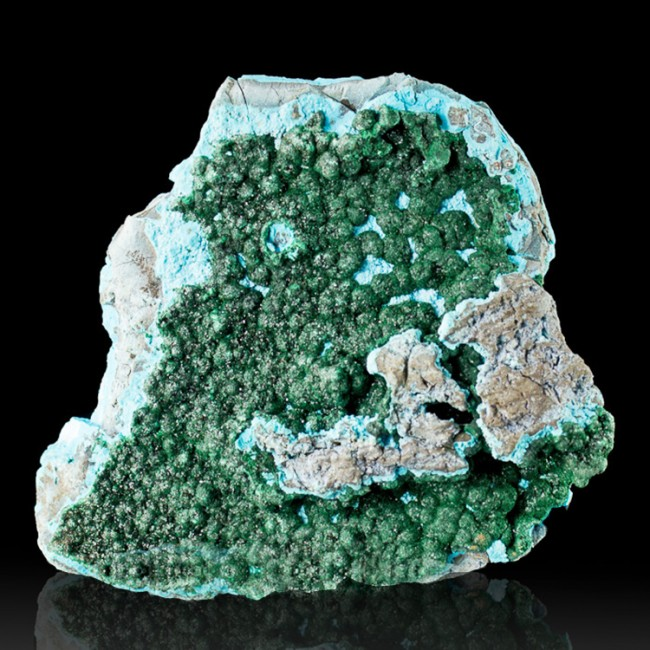 """4"""" MALACHITE Crystals w-Vibrant Turquoise Botryoidal CHRYSOCOLLA Congo for sale"""