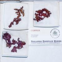Wholesale Flat 3 Pieces Arborescent COPPER Crystals @$15 Kazakhstan for sale