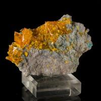"1.9"" SeeThruOrange WINDOWPANE WULFENITE Crystals to.5"" +MIMETITE Rowley for sale"