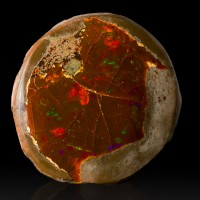 "1.3"" 115ct FlashyFiery Play-of-Color Red-Green-Orange Gem OPAL Ethiopia for sale"