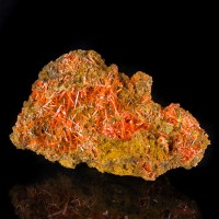 "3.3"" CROCOITE Terminated Lustrous Red Orange Crystals to10mm Tasmania for sale"