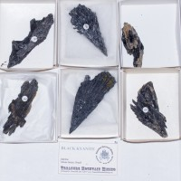 Wholesale Flat 6 pieces Sharp BLACK KYANITE Crystal Sprays Brazil @$15 for sale