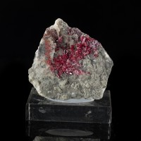 "2.1"" Bright Sparkling Vibrant Red PROUSTITE Crystals on Matrix Morocco for sale"