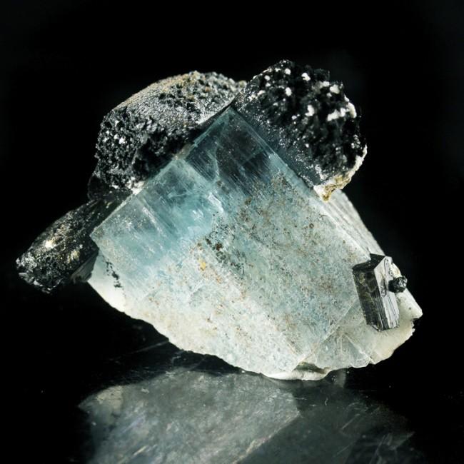 "1.6"" Gemmy Vibrant Blue AQUAMARINE Crystal on Black Tourmaline Namibia for sale"