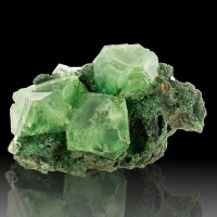 "4.4"" ALUM 6 Gem Clear Skeletal Green Octahedral Crystals to 1.5"" Poland for sale"