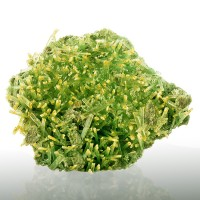 "3.6"" Golden Tipped MintGreen SELENITE Terminated Porcupine Crystals Rudya Poland"