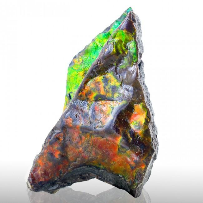 "2.8"" Orange-Red-Green Iridescent GEM AMMOLITE (Ammonite) Fossil Canada for sale"