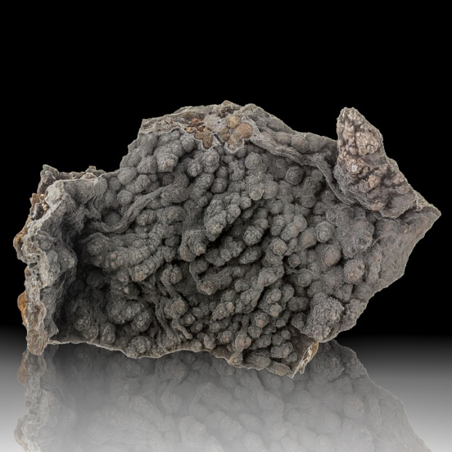 """5.7"""" Rich Sparkly Gray MOTTRAMITE Botryoidal Crystals on Matrix Mexico for sale"""