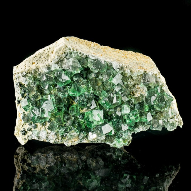 """5.1"""" Glassy Wet-Look Blue Green FLUORITE Crystals +Galena Rogerley M UK for sale"""