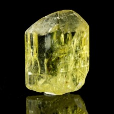 """.9"""" Rich GOLDEN APATITE Gemmy Crystal Sharp Lustrous Termination Mexico for sale"""