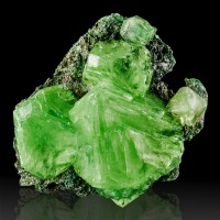 "4"" Saturated Crayon Green ALUM Crystals to 2.4"" on Black Matrix Poland for sale"