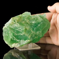 """5.2"""" Colorful Gemmy JELLO GREEN FLUORITE Crystal William Wise Mine NH for sale"""
