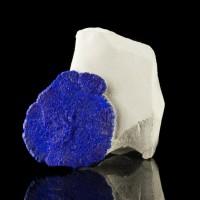 "1.7"" Round Royal Blue AZURITE SUN on White Siltstone Matrix Australia for sale"
