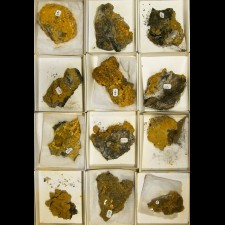Wholesale Flat 12 pieces Sharp Yellow WULFENITE Crystals SF Mine @ $8 for sale
