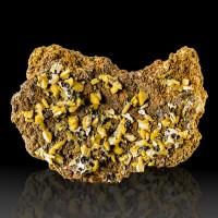 "5.1"" BIPYRAMIDAL WULFENITE Goldenrod Yellow Crystals w-Mimetite Mexico for sale"
