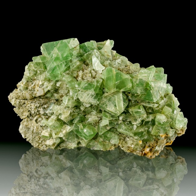 """5.6"""" Sharp Emerald Green Octahedral FLUORITE Crystals William Wise M NH for sale"""