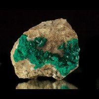 "3"" Dark Green Sparkling Gemmy DIOPTASE Crystals Altyn Tyube Kazakhstan for sale"