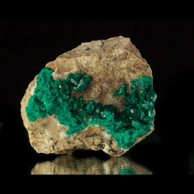"""3"""" Dark Green Sparkling Gemmy DIOPTASE Crystals Altyn Tyube Kazakhstan for sale"""